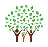 Family tree. Simple vector illustration of family tree with leaves logo isolated on white background stock illustration