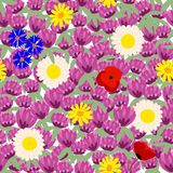 Colorful seamless floral pattern, summer blooming field vector illustration