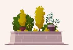 Beautiful plants. Cartoon vector illustration. Urban decoration. Exterior concept vector illustration