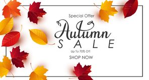 Autumn sale background with colorful leaves stock illustration