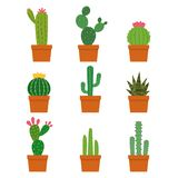 Cactus plant collections vector set stock illustration