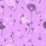 Dandelions on Lavender. vector illustration