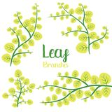 Leaf branches vector design illustration isolated on white background royalty free illustration