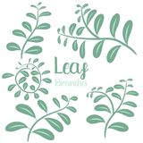Leaf branches vector design illustration isolated on white background vector illustration