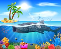 Whale shark cartoon with underwater view and coral background. royalty free stock photography