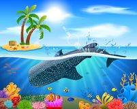 Whale shark cartoon with underwater view and coral background stock image