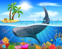 Whale shark cartoon with underwater view and coral background stock photos