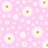 Floral Pattern of White Daisies in Pink Background vector illustration