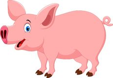 Illustration of cute and adorable pig cartoon. Isolated on white background vector illustration