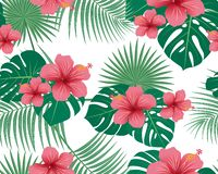 Seamless pattern of tropical floral and leaves on white background. Vector illustration royalty free stock photography