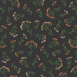 Seamless Floral Pattern in Vector hand drawn style. Ditsy repeated background. Repeated design for organic cosmetics, natural labe stock photography