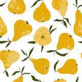 Tropical summer fruit seamless pattern. Yellow pear in hand drawn style. Vector vintage fabric design stock illustration