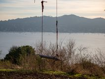 Basic swing overlooking nature and water. Basic rope swing overlooking nature and water with sun setting Stock Photos