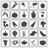 Basic Vegetables Icons Vector Collection Stock Photos