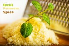 Basil. Branch green basil and parmesan spice Stock Image