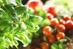 Free Basil And Tomato Royalty Free Stock Image - 67403046