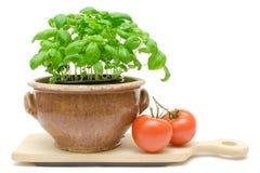 Basil And Tomatos Stock Photos