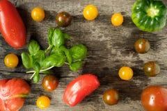 Basil avec différentes tomates d'aof d'espèces Image stock