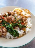 Basil beef fried rice and fried egg Royalty Free Stock Photos