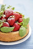 Basil cake with strawberries Stock Images