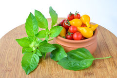 Basil and cherry tomato Royalty Free Stock Image