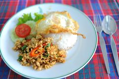 Basil chicken fried rice recipe Royalty Free Stock Image