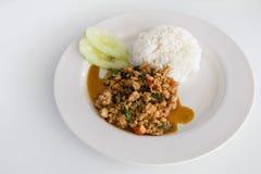 Basil Chicken tailandês Fotografia de Stock