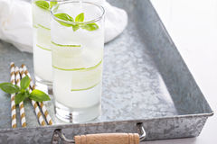 Basil cucumber sparkling drink in tall glasses Stock Photos