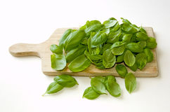 Basil on cutting board Royalty Free Stock Images
