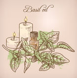 Basil essential oil and candles Royalty Free Stock Images