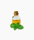 Basil essential oils in bottle isolated on white Stock Images