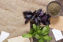 Basil frais et sec Image stock
