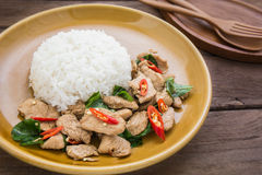 Basil fried rice with chicken (Pad kra prao kai), Thai food Stock Photography