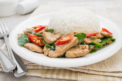 Basil fried rice with chicken (Pad kra prao kai), Thai food Royalty Free Stock Photography