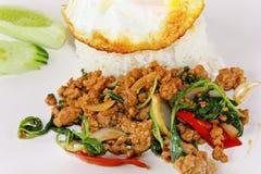Basil fried rice Royalty Free Stock Photos