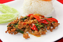 Basil fried rice Stock Images