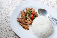 Basil Fried Rice met Varkensvlees Royalty-vrije Stock Afbeeldingen
