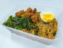 Basil Fried Rice met Varkensvlees en gekookt ei Royalty-vrije Stock Foto