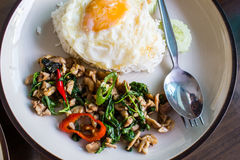 Basil fried rice with pork Royalty Free Stock Images
