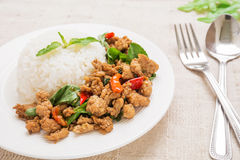 Basil fried rice with pork (Pad kra prao moo sap), Thai food Stock Image