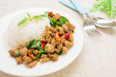 Basil fried rice with pork, Thai food Stock Photos