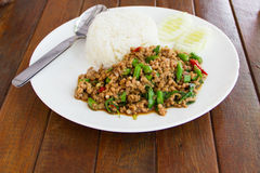 Basil Fried Rice with Pork Royalty Free Stock Photography