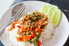 Basil Fried Rice with Pork. Stock Photo