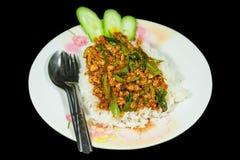 Basil Fried Rice. Stock Photos