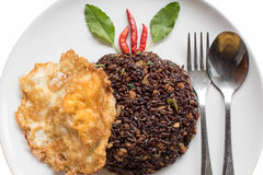 Basil fried riceberry rice mingled with minced pork and fried eg Stock Photography