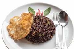 Basil fried riceberry rice mingled with minced pork and fried egg Stock Images