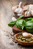 Basil, garlic, different spices Royalty Free Stock Photo
