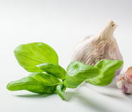 Basil and garlic for italian sauce preparation Royalty Free Stock Photography