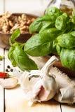 Basil, garlic and walnuts Stock Images