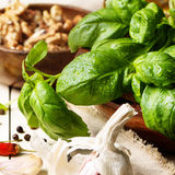 Basil, garlic and walnuts Royalty Free Stock Image